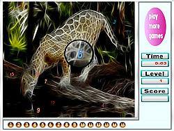 Fantastic Tigers Hidden Numbers