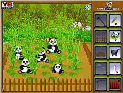 Panda Wild Farm