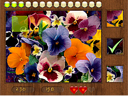 Parts of Picture:Flowers