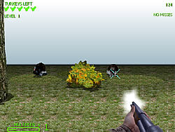 Turkey Shootout 3D